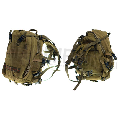 3 Day military backpack