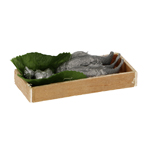 Fish and Shells Crate (Grey)