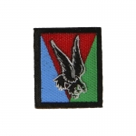 10th Airborne Division Patch (Blue)