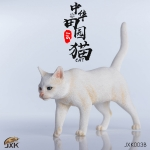Alley Chinese Cat (White)