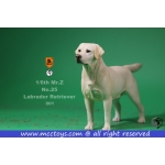 Labrador Retriever Dog (White)