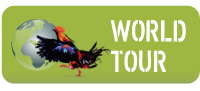 World tour
